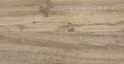 M799阿爾特深棕90800