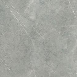FK1222509P_02特質灰